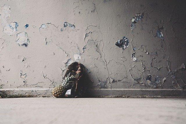 ananas u vlhké zdi