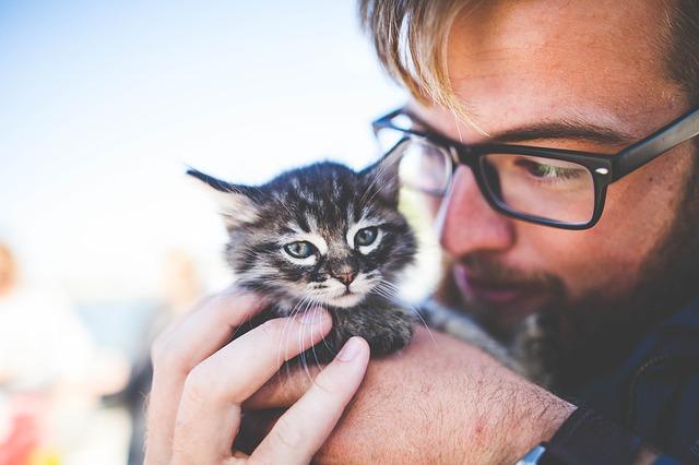 muž s kočičkou